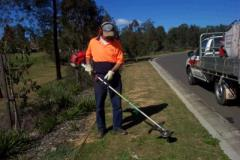 Rental store for BRUSHCUTTER in Sydney NSW