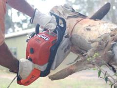 Rental store for CHAINSAW PETROL   STIHL MS310 in Sydney NSW