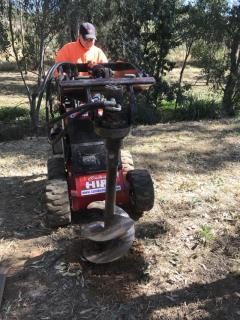 Rental store for DINGO POST HOLE BORER in Sydney NSW