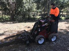 Rental store for DINGO TRENCHING HEAD  6 in Sydney NSW