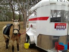 Rental store for HORSE FLOAT in Sydney NSW